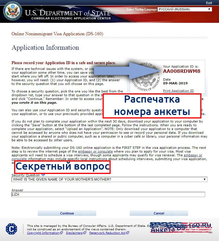 Анкета DS-160 application ID